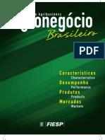 Agronegócio Brasileiro. Características, Desempenho, Produtos e Mercados