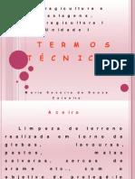 AULA 1 TERMOS TÉCNICOS 2011.2