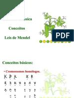 Mendelismo - FEPECS 1 e 2