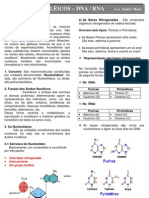 acidonucleicospdf