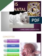 Pediatria Sepsis Neonatal