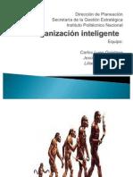ORGANZACIÓN INTELIGENTE 2