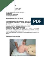 Manual Rcp 2