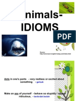 Animals - Idiom