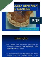 CRONOLOGIA DENTÁRIA EM EQUINOS