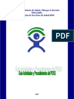 Guia_PDSS