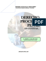 LIBRO PROCESAL PENAL2004