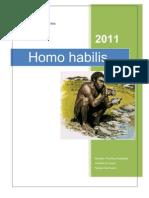 Homo Habilis 3.0