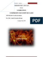COMBUSTION UCSM 2010 CFB