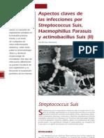 5 Infecciones Por Streptococcus Suis