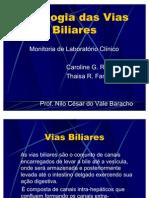 @Patologia+Das+Vias+Biliares