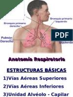 AnatoFisioRespiratoria2[1]