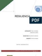 Informe de Resiliencia _I