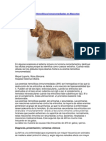 Anemias Hemolíticas Inmunomediadas en Mascotas