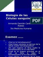 Biología Células Sanguineas