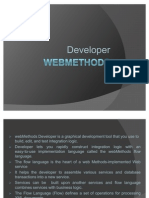 Web Methods Developer
