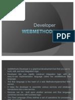 Web Methods Developer
