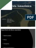 ecologia_-_seminario1