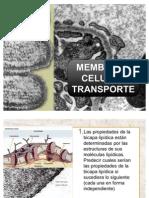 Membrana Celular Transporte[1] Nuevo