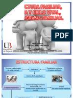 Estructura Familiar, Familia y ciclo familiar, y Genograma familiar