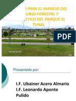 MODELO FORESTAL Y PAISAJISTICO - FINAL 2