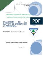 Evaluación de captura de carbono