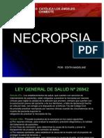 Necropsia