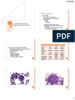 Platelet Production, Structure, And Function
