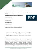 Energia Renovável no Brasil. A opção pela Biomassa