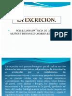 La Excrecion Diapositiva LILIANA Y DUVAN
