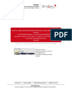 Las Organizaciones y La Evolucion Administrativa