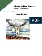 Twenty-First Century Poetry and Poetics