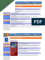 Dicionario - Competencias organizacionais (1)