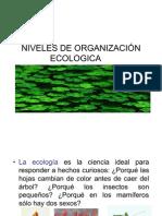 NIVELES DE ORGANIZACIÓN ECOLOGICA octavo unidad tres