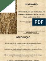 Seminário CAPTURA DE CO2 SOB ALTA TEMPERATURA POR SORBENTES OBTIDOS DE CINZA DE CASCA DE ARROZ  BASEADOS EM LÍTIO 2