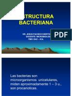 ESTRUCTURA_BACTERIANA