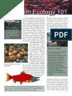 salmon ecology fact sheet