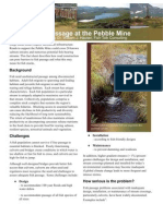 pebble fish passage
