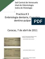 embriologia_dentaria