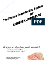 The Female Reproductive System by Abhishek Jaguessar