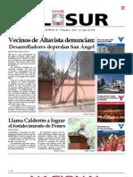 Vivir El Sur Junio 2008