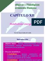 B[1].B. y F. C-12 Metabolismo
