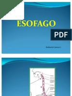 Esofago Listeth Cantos