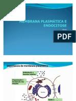 Membrana e Endocitose2010 [Modo de Compatibilidade
