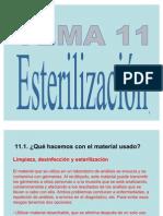 tema11esterilizacin-110506065901-phpapp01