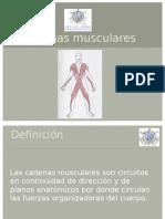 cadenasmusculares-100818183227-phpapp01