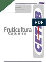 52970229-APOSTILA-FRUTICULTURA-CAJUEIRO
