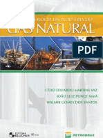 ISSUU Gas Natural Isbn9788521204213
