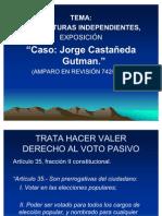 expo caso Jorge Castañeda Gutman