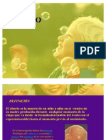 ABORTO DIAPOSITIVA3